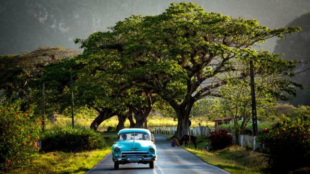 Cuba / Classic Car on scenic Road Classic American car rolls down a quiet rural country road in Valle de Vinales Cuba. country road stock videos & royalty-free footage