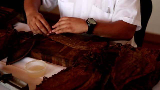 rolling sigaro cubano e taglio 02 - sigaro video stock e b–roll