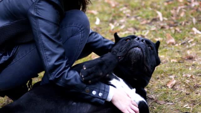 vidéos et rushes de câlins avec cane corso dog - femme seule s'enlacer