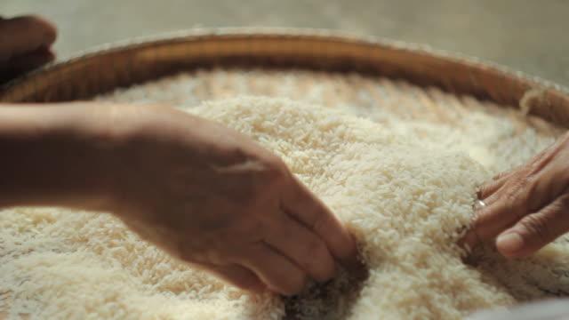 culling rice - skalhylsa bildbanksvideor och videomaterial från bakom kulisserna