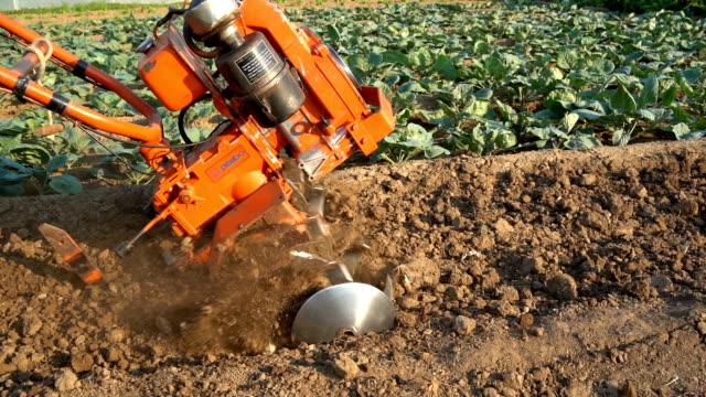 vidéos et rushes de bineuse slowmotion - équipement agricole