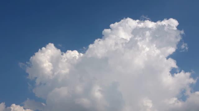 vídeos de stock, filmes e b-roll de nuvens de chuva de cumulus que movem o céu - cúmulo