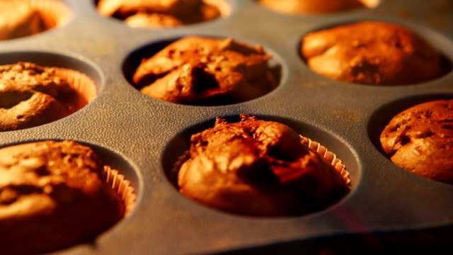 Cupcake. Baking in oven. Time lapse footage of cooking muffins. 4k, UHD Cupcake. Baking in oven. Time lapse footage of cooking muffins. UHD bread stock videos & royalty-free footage