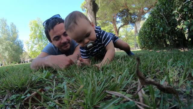 nyfiken pojke krypa på gräs - ligga på mage bildbanksvideor och videomaterial från bakom kulisserna