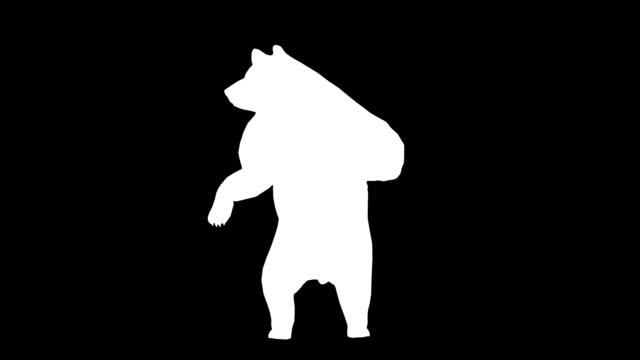 Curious Bear (Loopable) http://i1255.photobucket.com/albums/hh626/tfsselami/silhouetteprev20.jpg bear stock videos & royalty-free footage