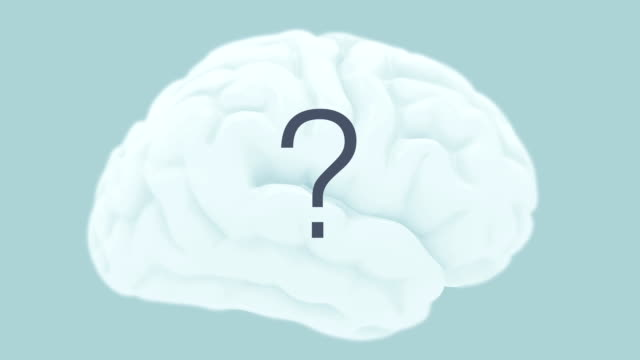 Curious brain - inquiring mind, illustration. Camera orbits round an isolated  model of a brain filled with a changing question mark. cerebellum stock videos & royalty-free footage