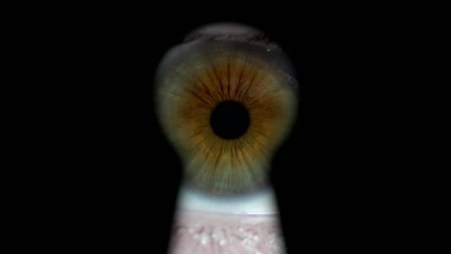 Curious eye looking through keyhole. Curious eye looking through keyhole. keyhole stock videos & royalty-free footage