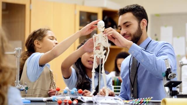 stockvideo's en b-roll-footage met nieuwsgierig privé elementaire stam scholieren leren over menselijk skelet - lagere schoolleeftijd