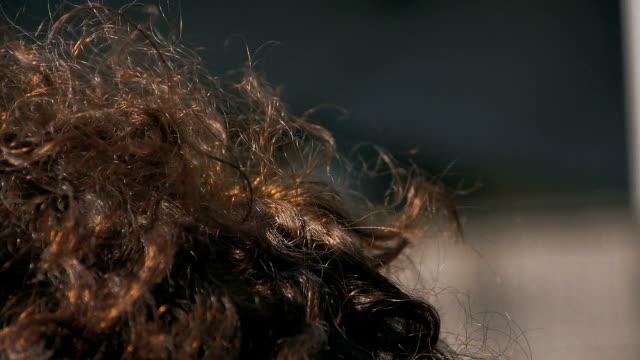 stockvideo's en b-roll-footage met krullend sloten van kastanje haar in de zon - curly brown hair