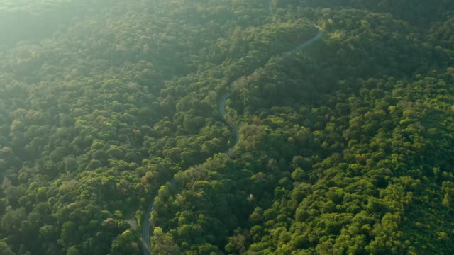 curve road on the mountain aerial view - passo montano video stock e b–roll