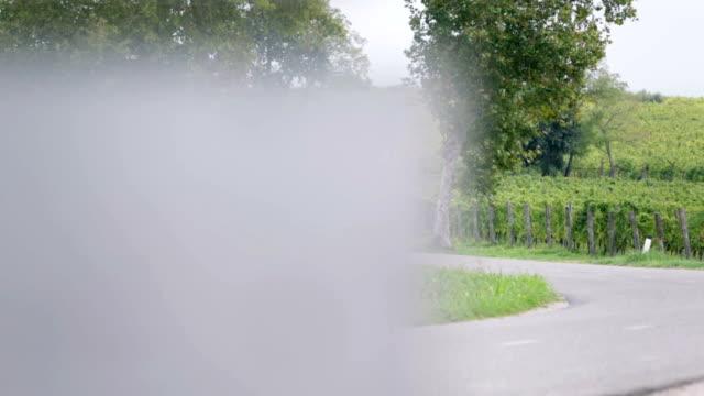 hd: curvy concrete road on countryside - vit rieslingdruva bildbanksvideor och videomaterial från bakom kulisserna