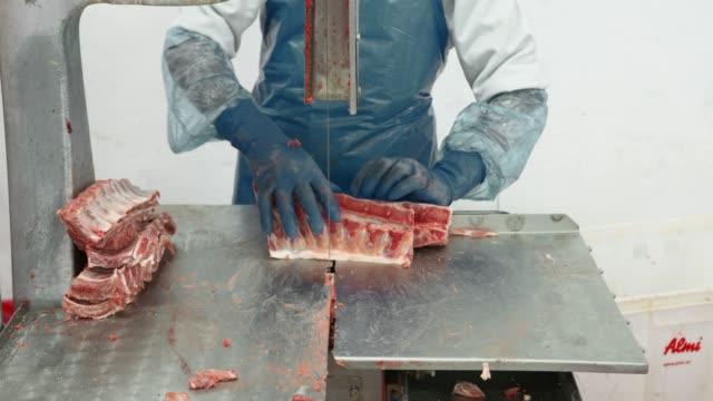 stockvideo's en b-roll-footage met snij karkassen van varkensvlees. close-up van borstel, bespuit het karkas van varkensvlees - dood dier