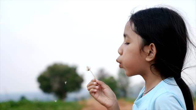vídeos y material grabado en eventos de stock de linda niña asiática soplando viento para secar la flor del prado con la felicidad - soplar