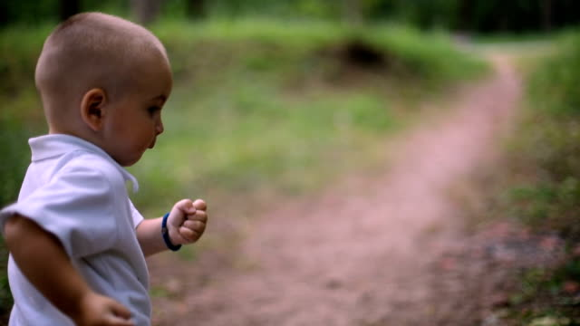 cute baby boy walking in spring forest video