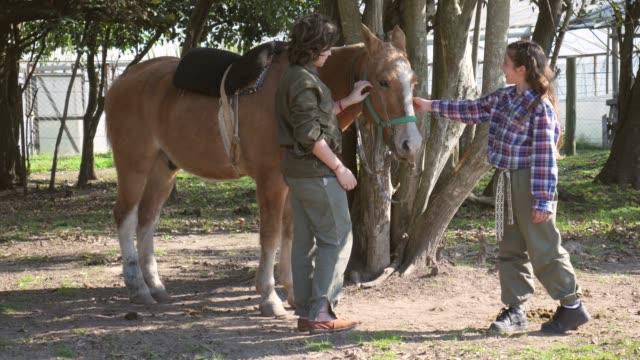 笑顔の農場で馬をふれあいかわいい弟と妹 - 動物に乗る点の映像素材/bロール