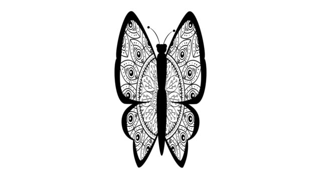 cute butterfly with boho style