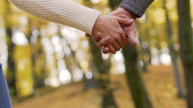 Cute couple holding hands and walking in city park during fall, autumn nature video
