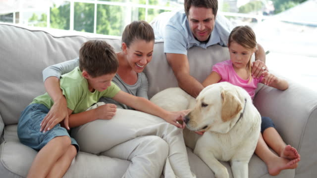 Cute family relaxing together on the couch with their dog video
