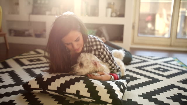 cute girl cuddling her dog - border collie video stock e b–roll