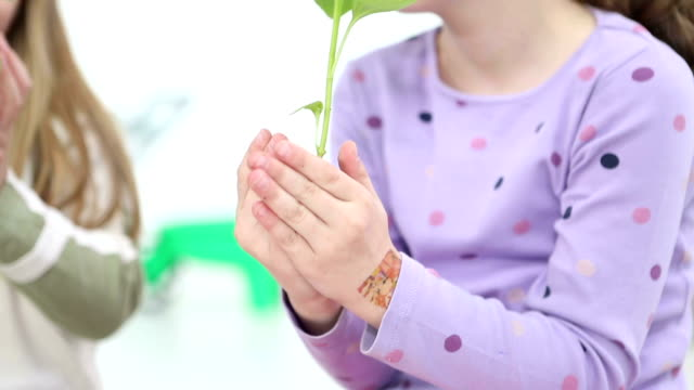 HD: Cute Girl Holding Baby Plant with ground. video