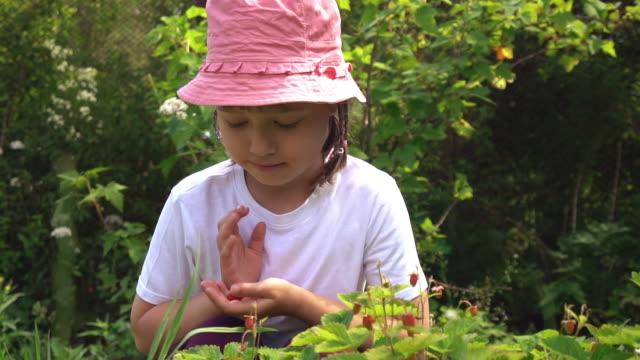 Cute girl picking berries