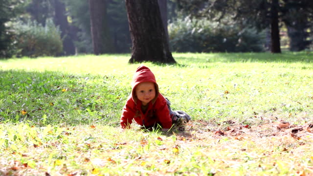 Cute little baby crawling in a park video