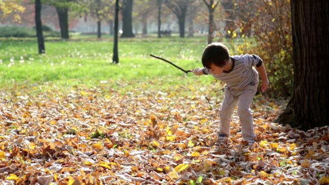 Cute little boy outdoors video