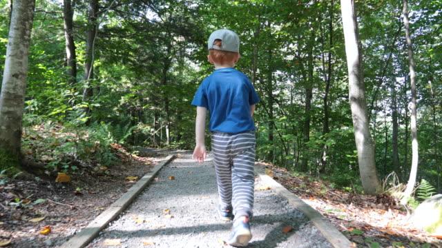 vídeos de stock e filmes b-roll de cute little boy toddler exploring forest on hiking trail - criança perdida