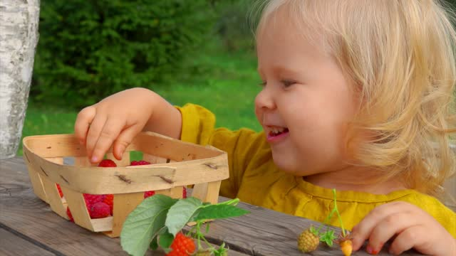 A cute little girl eats raspberries and laughs outdoors on the sunny day