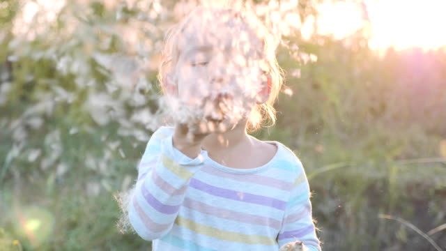 Cute little girl having fun blowing Dandelion seeds while relaxing at nature.