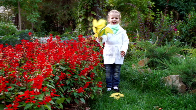 Cute little girl in autumn park. video