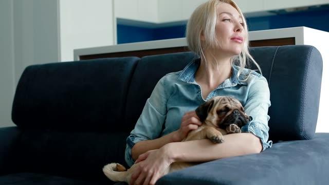 vidéos et rushes de cute pug, dormant sur les mains de propriétaires - femme seule s'enlacer