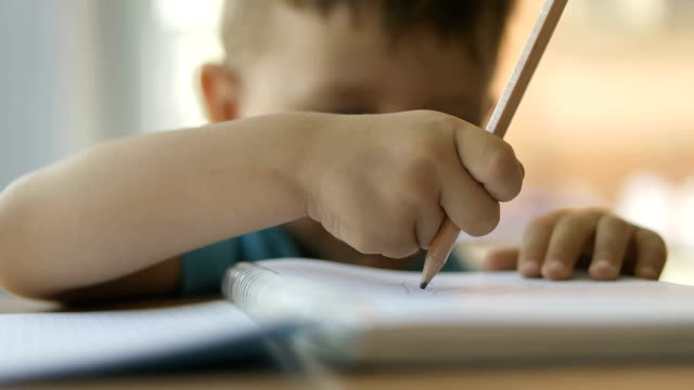 Cute pupil writing at desk video