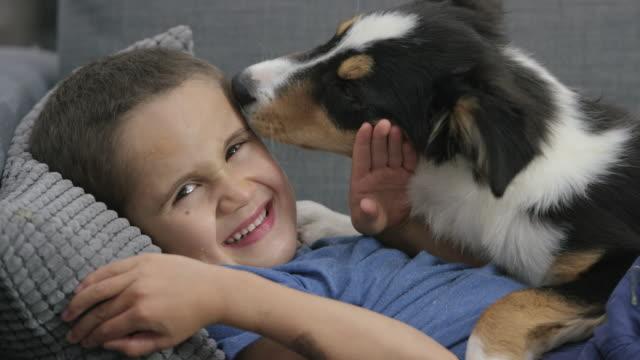 Cute Puppy Licking Boy's Face video