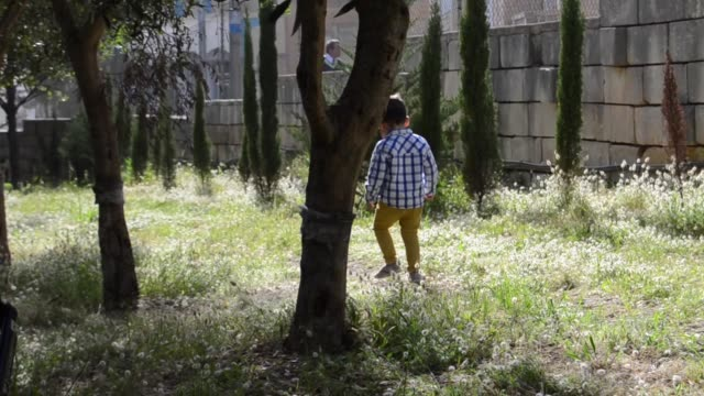 cute two years old boy playing in the park. sitting in the grass and picking up branches - solo neonati maschi video stock e b–roll