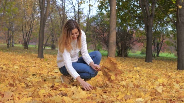 Cute Woman Collects Fallen Golden Leaves In The Bouquet Outdoors In Autumn Park video