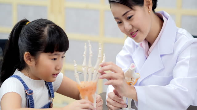 Cute young girl touching a skeleton while trying to check whether it is real with the teacher.Education Topics.Asia concept.