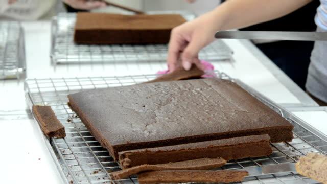 vídeos de stock e filmes b-roll de pão de chocolate - teobroma
