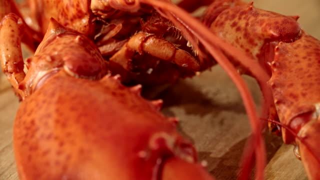 vídeos y material grabado en eventos de stock de corte a la langosta y marinate, con mantequilla de chile - alimentos cocinados