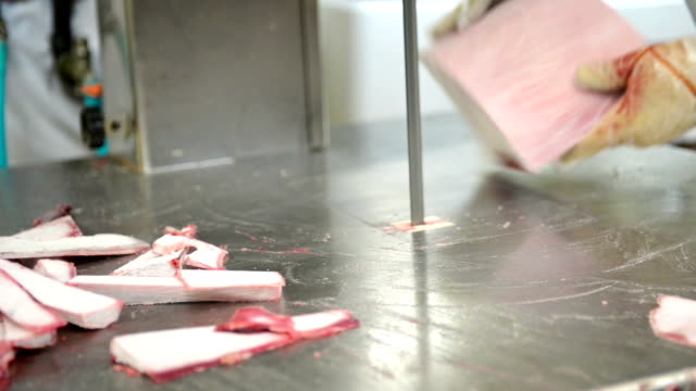 Cutting frozen tuna video