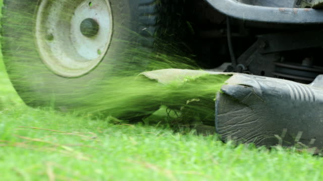 vídeos de stock e filmes b-roll de cutting grass with professional lawn mower machine  worker trimming garden - relva