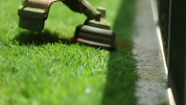 vídeos de stock e filmes b-roll de cutting lawn with machine  trimming grass with mower in 120fps slow motion - relva