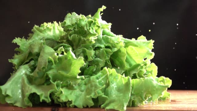 Cutting Lettuce for Salad