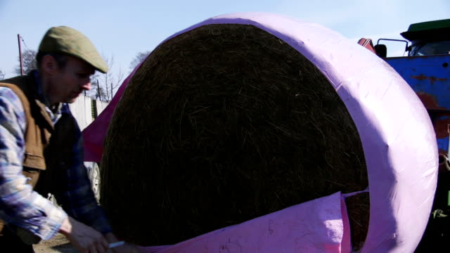 Cutting Open a Silage Bale video