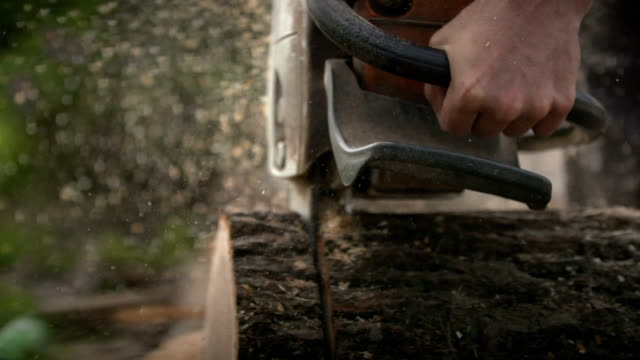 Cutting through wood with chainsaw in slow motion. video