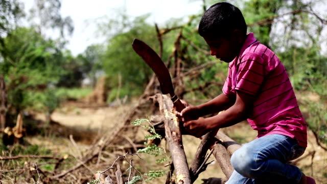 Cutting woods video