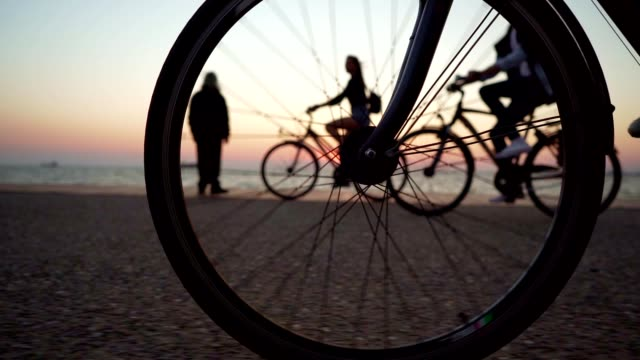 Cycling by the sea Low section of unrecognizable person riding a bike. wheel stock videos & royalty-free footage