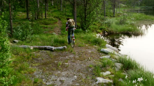 Cycling in idyllic mountain landscape. River surrounded by forest