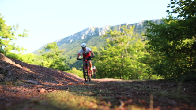 cycling race in woods - evento ciclistico video stock e b–roll