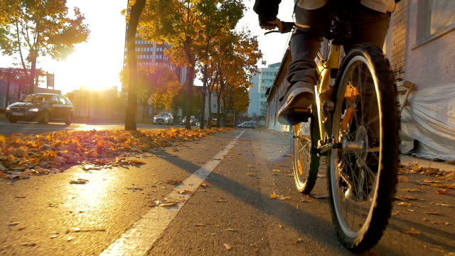 Cycling trugh a park in a beautiful autumn sunset video